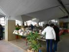 Mercato agricolo natalizio domenicale