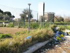 area cani Parco Via Chiodelli  (2) - Ambra