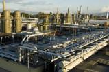 BASF Roma sc017