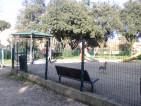 Decesso parco Villa Gordiani