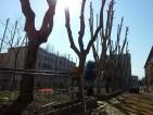 Riqualificazione Piazza Quarticciolo (9)