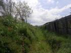 Il fosso di via Siculiana