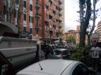 Via_Torpignattara_2
