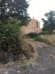 vegetazione-bruciata-al-limitare-della-carreggiata